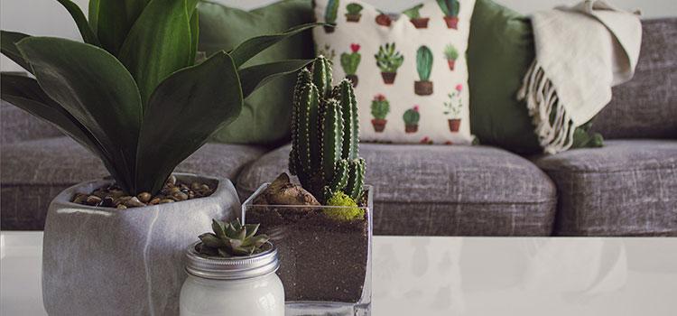 Top Interior Design Trends: Local Designers' Top Picks